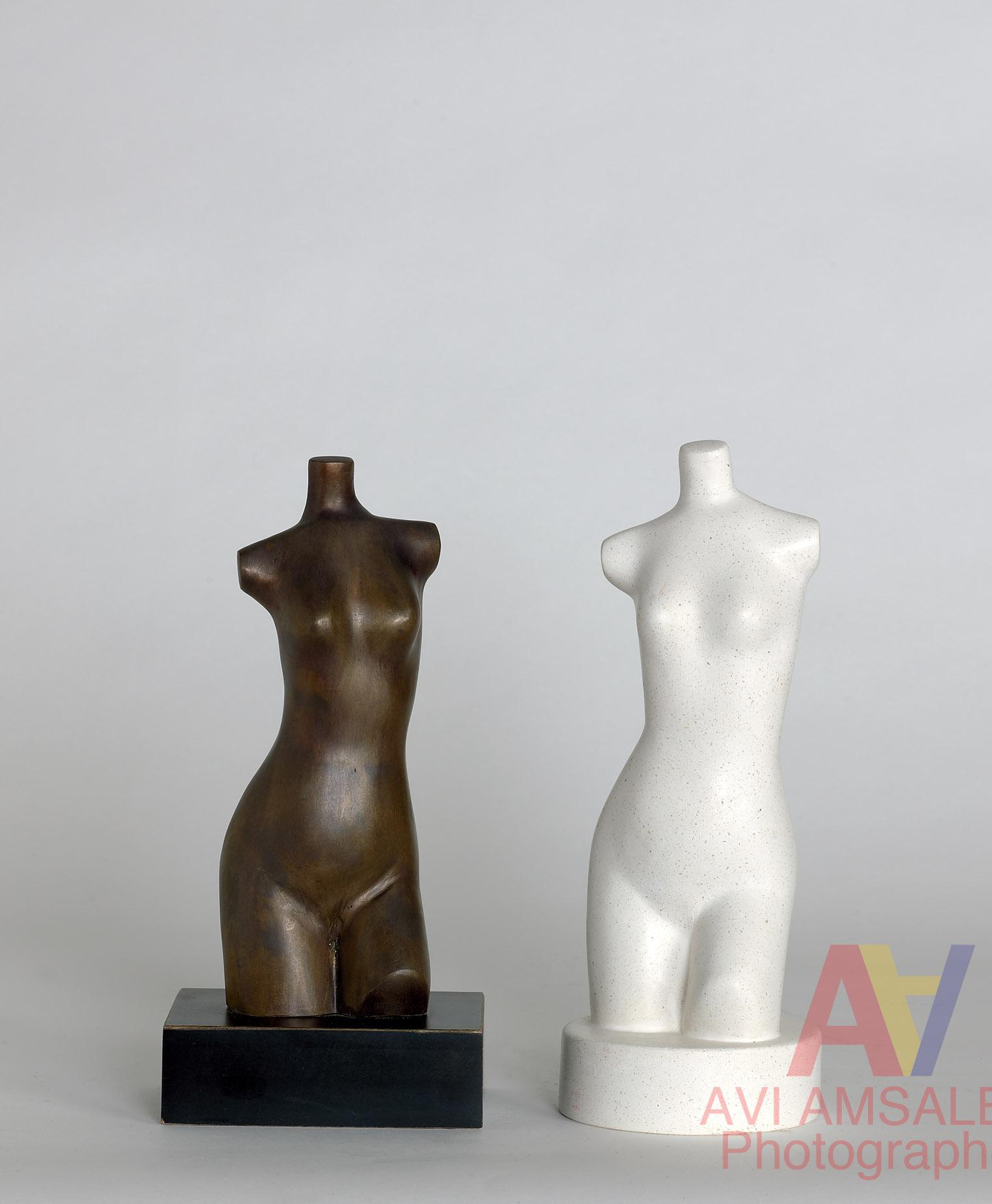 צילום פסלים.38