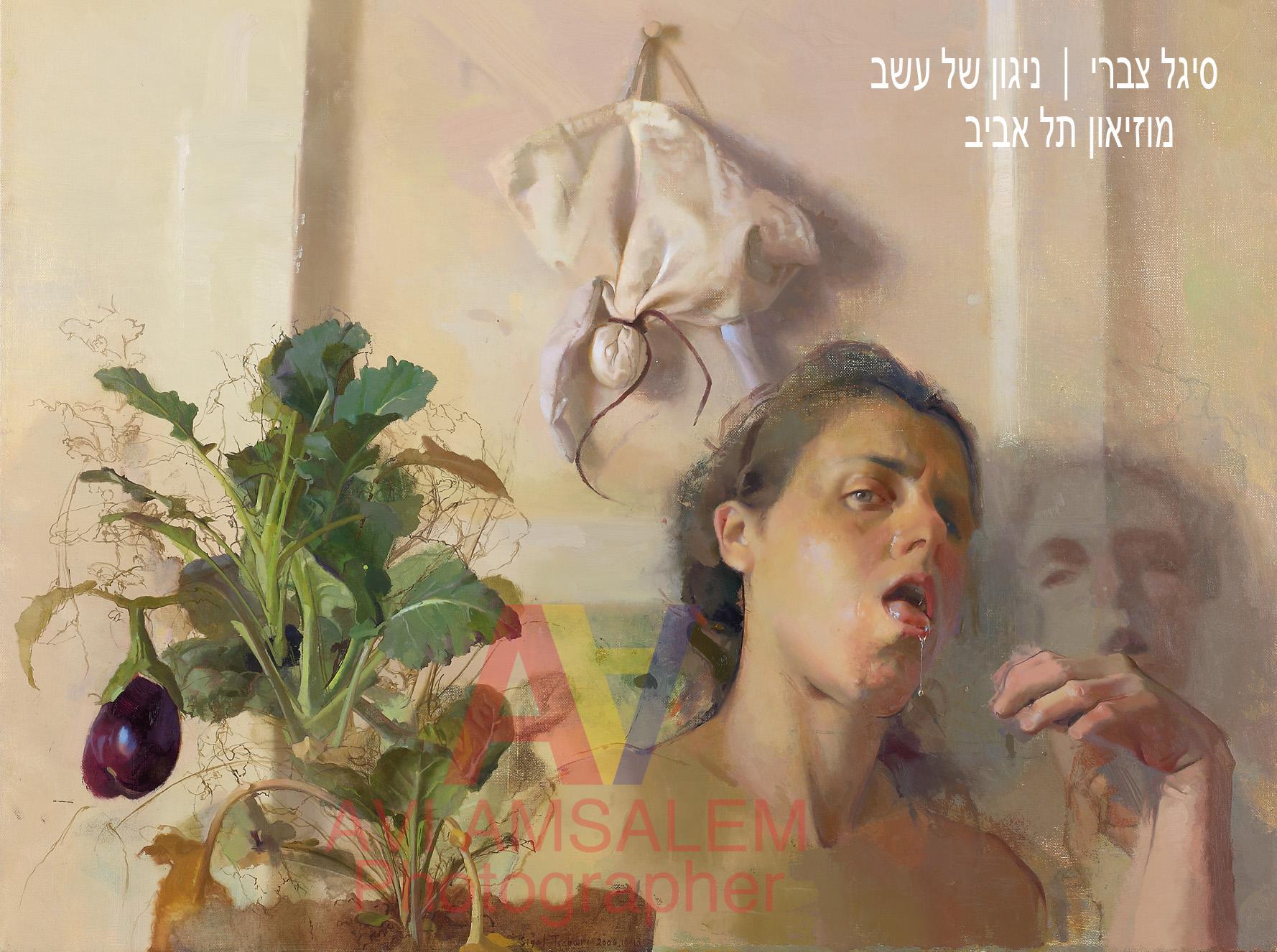 צילום ציורים.121