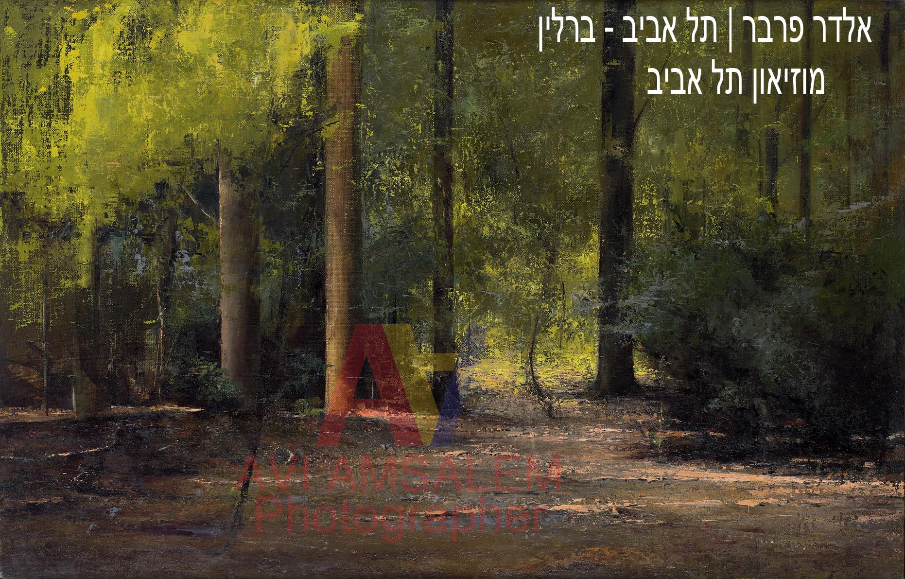 צילום ציורים.124