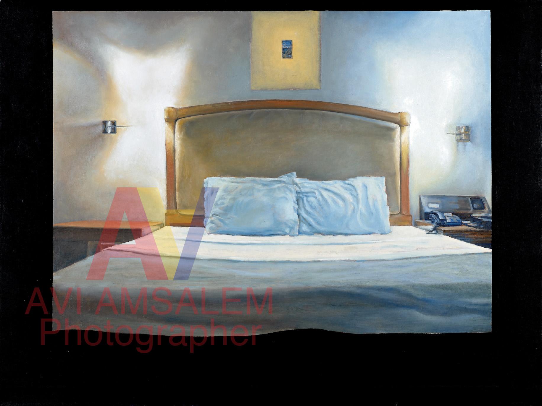 צילום ציורים.26