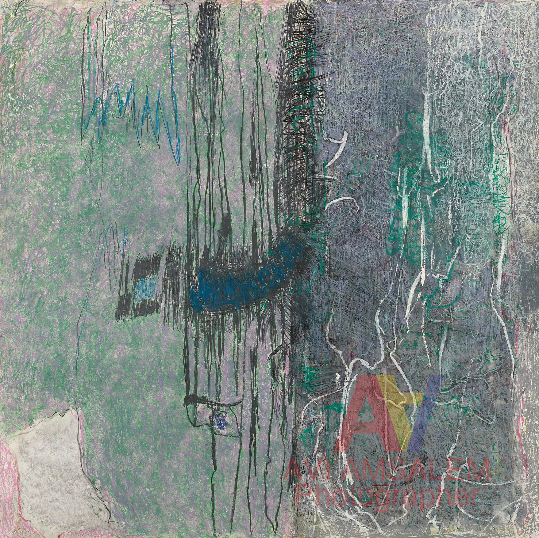 צילום ציורים